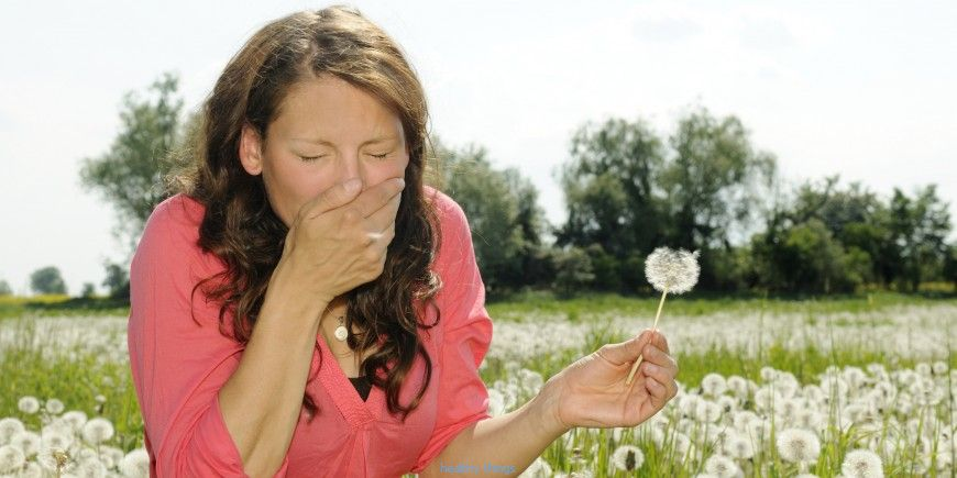 Hay fever: sources and notes - Diseases